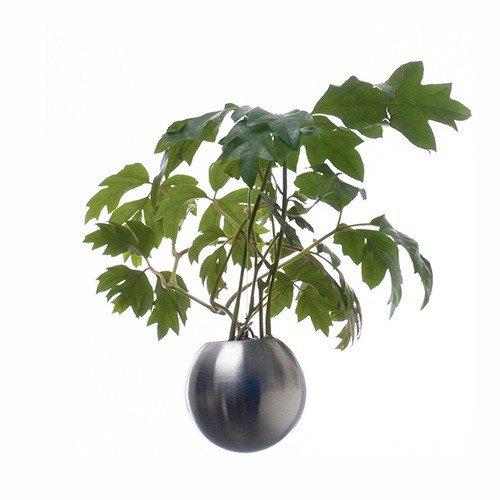 Hangende plant - bloempot
