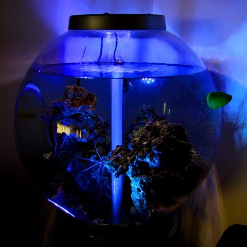 LED Aqua Lights