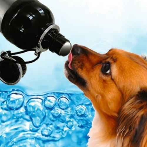 Drinkfles voor honden