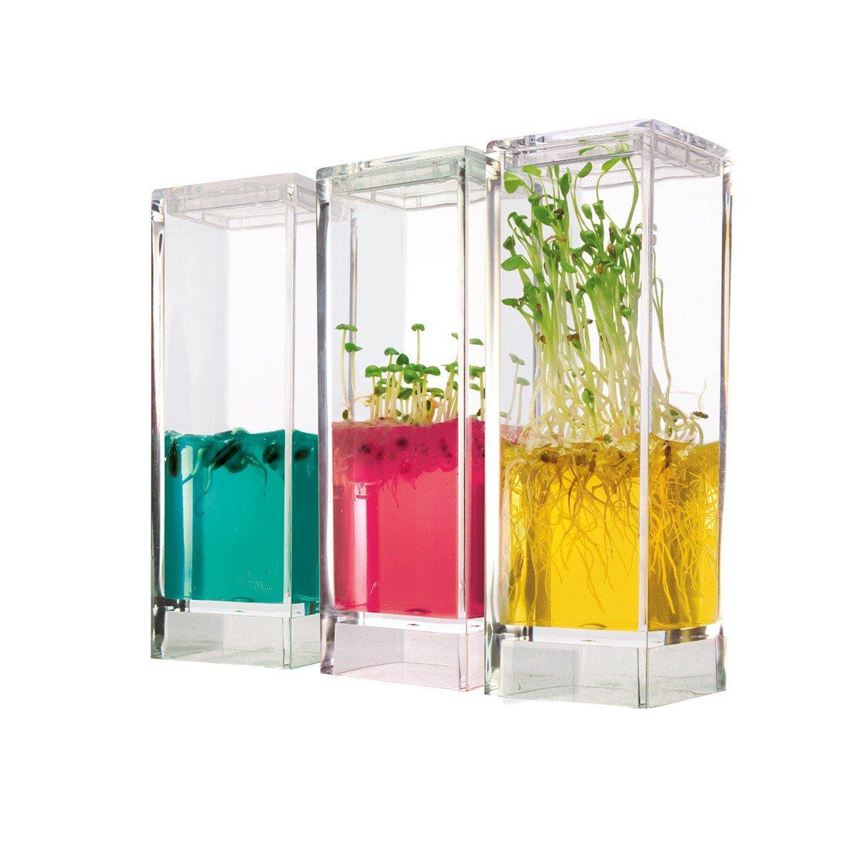 Plantenlaboratorium met gel