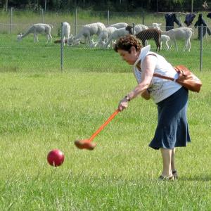 Boerengolf voor 5 personen - Kaulille