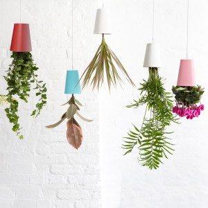 Boskke Sky Planter - de net iets andere bloempot