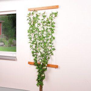 Decoratieve plantensteun