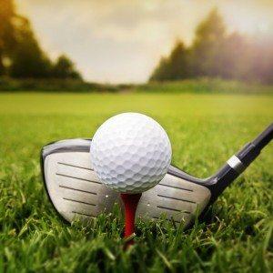 Golf cursus - Ommen