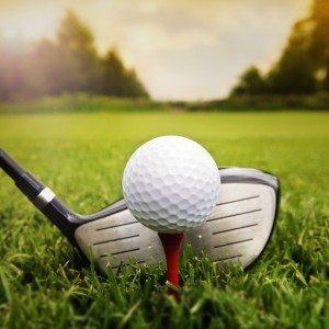 Golf cursus - Putten