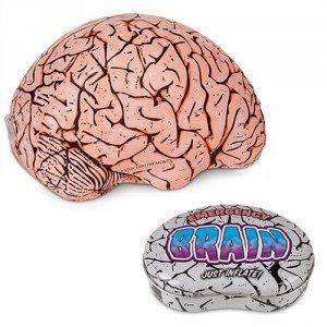Hersenen voor noodgevallen