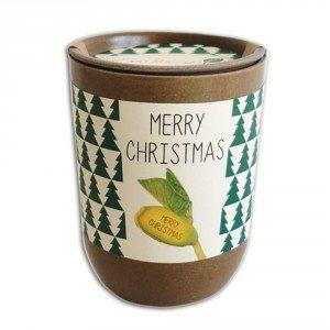 Merry Christmas – Groeiende gelukswens