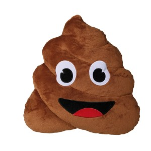 "Pluche kussen ""Pile of Poo"""