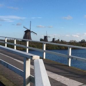 Rondvaart naar de kinderdijk - Rotterdam