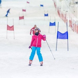 Skiën of snowboarden 2 uur - Rucphen